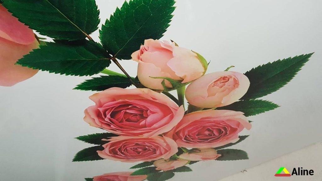 роза на натяжном потолке в ванной